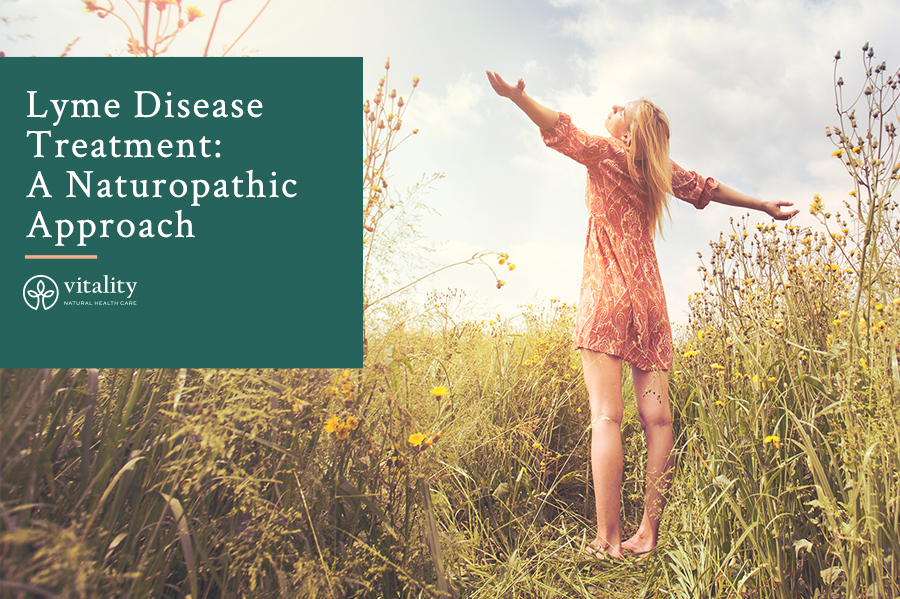 Lyme Disease Treatment: A Naturopathic Approach