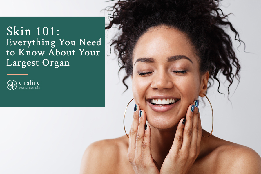 Skin 101: Everything You Need  to Know About Your  Largest Organ